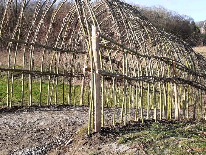 Woven willow tunnel
